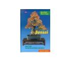 Virágkötészet, bonsai